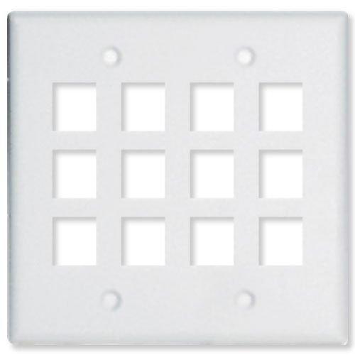 2 Gang Wall Plate for Keystone - 12 Ports